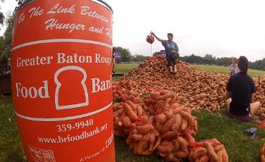 LSU Potato Drop