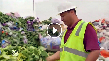 Huge Food Waste: PBS / NPR Story