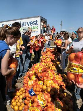 Harvest of Hope in Florida