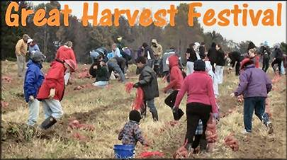 The Great Harvest Festival