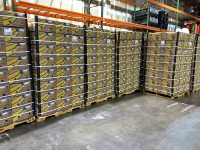 36,000 pounds of bananas await distribution at Loaves and Fishes warehouse.