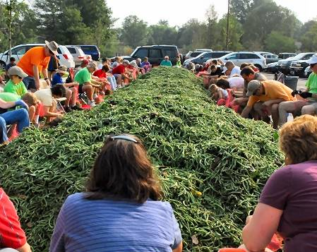 Volunteers bagging green beans.