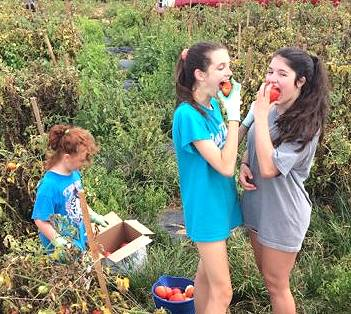 Girls eating tomatoes