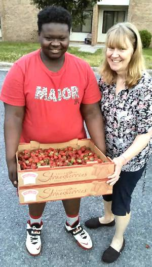 Strawberries in Thomasville