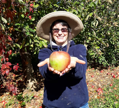 Jean Siers with a windfall fruit.
