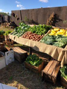 Shopping at Farmers Markets