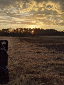 Gleaning before sunrise in North Carolina with The Society of St. Andrew